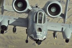 A-10 Warthog...this makes the jet look cooler.
