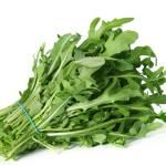 - Arugula should be refrigerated and kept dry. Storing the arugula in a plastic bag with a dry paper towel can help the greens stay dry. Kept dry and cool arugula can last up to two weeks. Herb Seeds, Garden Seeds, Fennel And Apple Salad, Home Remedies, Natural Remedies, Arugula Recipes, Acerola, Perennial Vegetables, Menu