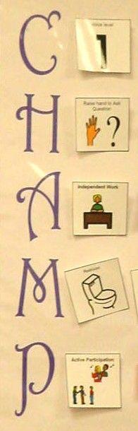 Excellent for modeling correct classroom behavior.
