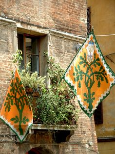 One of the flags of the contrade (neighborhoods) that compete in the yearly palio (horse race). Study abroad in Siena, Italy, with Harper College. Contact studyabroad@harpercollege.edu for more information.
