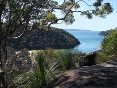 Idyll by myopixia, via Flickr  This is one of the easterly-facing bays on the West Head Peninsula (or more correctly, the Lambert Peninsula). That's Mackerel Beach down below me. One of those few areas of the peninsula not included in the Ku-Ring-Gai Chase National Park. The water is Pittwater, and this is where 5 rivers (at least i think it's 5) empty into the ocean. The lump of land in the right hand distance, connected to a narrow sand spit, is Barrenjoey Head. Sydney.