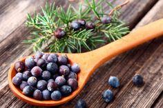 8 plante sănătoase care ajută la slăbit — Doza de Sănătate