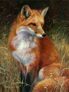 Red Fox by Joni Johnson Godsy