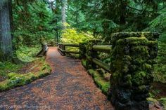 10 Marvelous Trails You Have To Hike In Oregon Before You Die