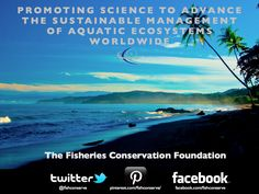The Fisheries Conservation Foundation