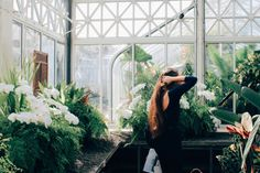 kaiyajosett: Volunteer Park Conservatory (Draw me after You; Let us run!)