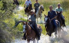 Riding in the Okavango Delta Okavango Delta, Safari, To Go, Africa, Bucket, Horses, Animals, Animales, Animaux