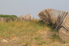 Beach Fence Photography Sand Dunes Coastal Wall Art Misquamicut Beach Rhode Island New England Seascape Neutral Decor Rustic Fencing