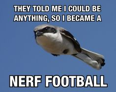 Nerf Football... apparently.
