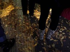 """ dry leaves ""  23,Nov.2013  カサカサの音をよく耳にする。カサ。カサ。カサコソ。"