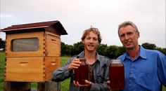 This Beehive Design Produces Honey on Tap!