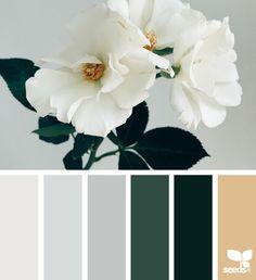 { flora tones } image via: @kylaferguson  #color #palette #colorpalette #pallet #colour #colourpalette #design #seeds #designseeds #seedscolor