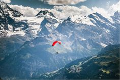 Paragliding is very popular in Switzerland and it's one of the most amazing places to fly down into a valley from a mountain top. Here at Männlichen in Wengen in the Bernese Oberland region of the Swiss Alps. Oh The Places You'll Go, Places To Visit, Hang Gliding, Paragliding, Way Of Life, The Great Outdoors, Landscape Photography, Beautiful Places, Amazing Places