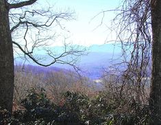 Toe River Valley, NC. My paternal ancestors lived here during the American Revolution, being the first of three settlers, amongst Cherokee and Catawba Indians. In 1780, overmountain men and patriots on route to the battle of King's Mountain crossed over a passel to become known as Gillespie Gap. Taken captive from his 600 acres because he was thought to harbor useful information, Henry Gillespie was kept all night in the camp and interrogated, but kept neutral and was released come morning.