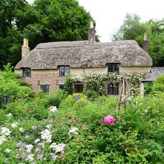 Far from the madding crowd ~ A lovely morning spent wondering around the little thatched cottage and gardens where Thomas Hardy was born Madding Crowd, Cottage Homes, Cottage Gardens, Garden Trellis, Large Homes, Luxury Homes, Gazebo, Cool Pictures, Outdoor Structures