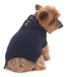 TORY BURCH soft DOG SWEATER  $65.00. For Fender :)