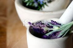 Freshly picked Lavender in a Pestle & Mortar Royalty Free Stock Photo