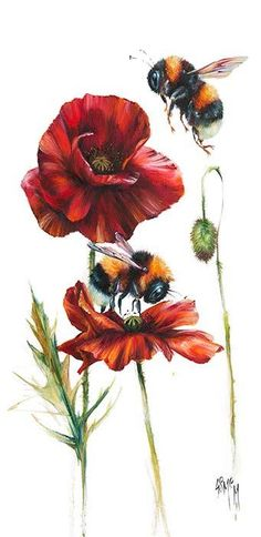 Simply Red (Bees) - Georgina McMaster (Signed Limited Edition Giclee on Paper) Bee Painting, Painting & Drawing, Bumble Bee Tattoo, Poppies Tattoo, Bee Art, Wildlife Art, Framed Art Prints, Watercolor Paintings, Art Drawings