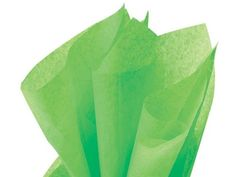 GROOVY GREEN Tissue Paper 20x30'.480 Sheet Quire Fold Ream (2 unit, 1 pack per unit.) -- Check this awesome product by going to the link at the image.