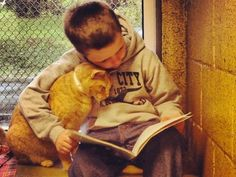 "The Animal Rescue League of Berks County, Pennsylvania has instituted a program called "" Book Buddies"" where children volunteer to read to sheltered cats. So wonderful and heart warming."