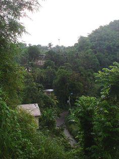 Beautiful Jamaica.