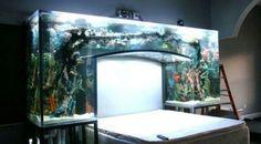 Inspirational Amazing Aquarium Bed