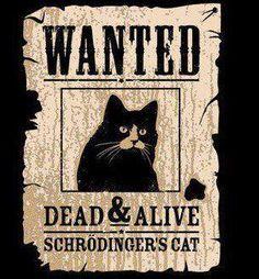 Quantum Observations: Keeping Schrodinger's Cat Alive ...