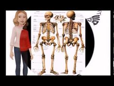 Proxecto O Corpo Humán: Aparello Locomotor - Esqueleto Humano - Ceip Antonio Blanco de Covelo. Equipo Blog con los estudiantes de 5º de Primaria Cos, Bobby Pins, Hair Accessories, Youtube, Projects, Human Skeleton, Students, Learning, White People