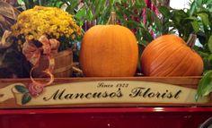 #Mancuso's #Florist #Flowers #Fall #Detroit #Michigan