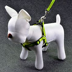 Ecoastal Reflective Dog Harness Include a Reflective Dog Leash M * Check out the image by visiting the link.