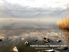 Lake Fertő in Hungary