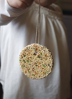 Bird seed for Fawkes. If I make these in my office, perhaps he won't get so crabby when he's hungry.