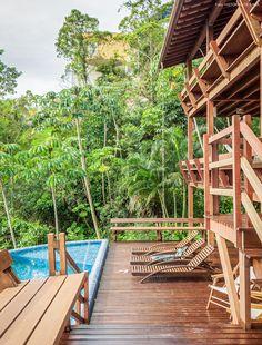 Piscina revestida com pastilhas na cor azul e vegetação tropical na área externa da casa em Ilhabela.