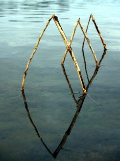 http://www.cjwho.com/post/61492582469/landart-by-ludovic-fesson-using-the-water