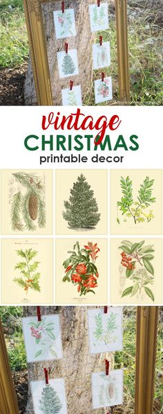 Free Christmas printables with a vintage twist are here! Get these 6 free vintage Christmas printables and add a pop of yesterday to your holiday decor!
