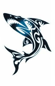 1000 Ideas About Tribal Shark Tattoos On Pinterest