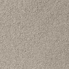 SIMPLE ATTRACTION, North American Grey, Plush PetProtect® Carpet - STAINMASTER®