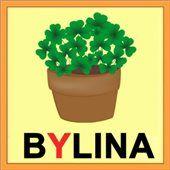 Pexeso: Vyjmenovaná slova B 3 D, Planter Pots, Herbs, School, Children, Ideas, Young Children, Boys, Kids