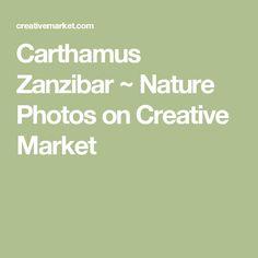Carthamus Zanzibar ~ Nature Photos on Creative Market