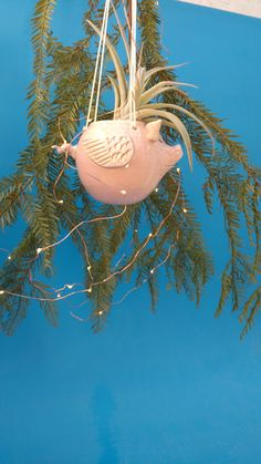Flying Pink Pig Planter,Hanging Planter,  Succulents,Air Plants, Joyful Gift by CindySearles on Etsy
