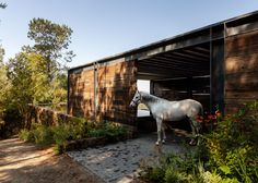 An open-sided shelter made from railway sleepers provides a stable on the roof of this house in Mexico