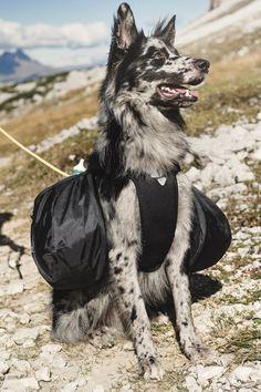 Trail pack - hurtta.com