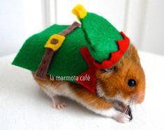 Hamster Christmas elf costume. Chinchilla / hamster / guinea pig / rabbit pet costumes by la Marmota Café.
