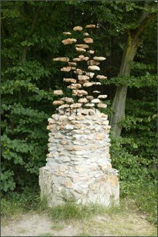 the gate (2004)	.  SenArt en Forêt,  Fontainebleau (France)    Installation on the remains of two gate posts  . stones, iron, concrete  3.5 x 5.0 x 0.8 m    Installation auf den Resten zweier Torpfosten  . Steine, Eisen, Zement  3,5 x 5,0 x 0,8 m