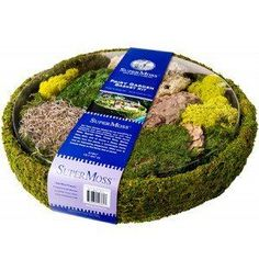 Moss & Moss Kits for Miniature and Fairy Gardens