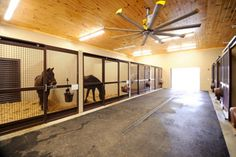 Large Ceiling Fans For Stables Riding Arenas Big Ass Fans - Big Ass Fans Can Be Slowed To Gently Create Consistent Temperatures From Ceiling To Floor Alleviating Condensation Concerns In Indoor Riding Arenas Quality Footing Can Make The Difference Between Barn Stalls, Horse Stalls, Horse Barns, Dream Stables, Dream Barn, Luxury Dog Kennels, Large Ceiling Fans, Horse Barn Designs, Horse Barn Plans