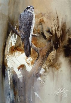 "Bird ""Deceptive Calm"" Watercolor by Morten E. Solberg, Sr. (Goshawk)"