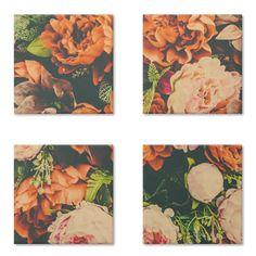 Magneto Flowers de @mandalcantara   Colab55