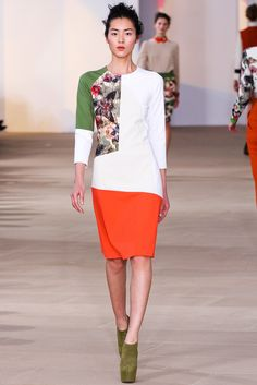 http://www.style.com/slideshows/fashion-shows/fall-2012-ready-to-wear/preen-by-thornton-bregazzi/collection/8