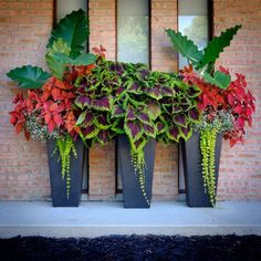 Front Porch Flower Planter Ideas 27